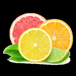 Cítricos - Citrus